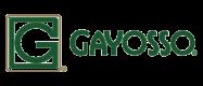logo-gayosso