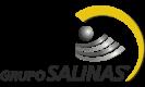 logo-gsalinas